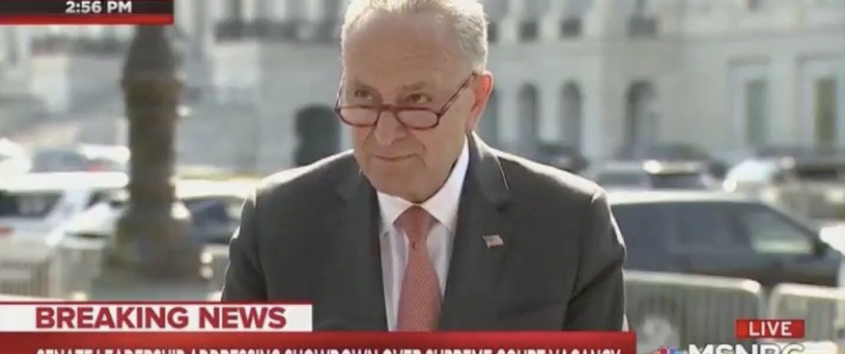 Chuck Schumer Tried To One Up Trump, One LOUD PATRIOT Had Him Soiling Himself! [VIDEO]